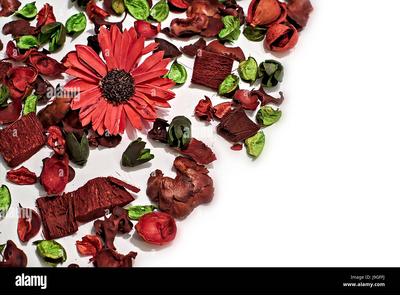 Dry flowers and leafs composing a nice texture with red and green as predominant colors and blurred white as background - Stock Image