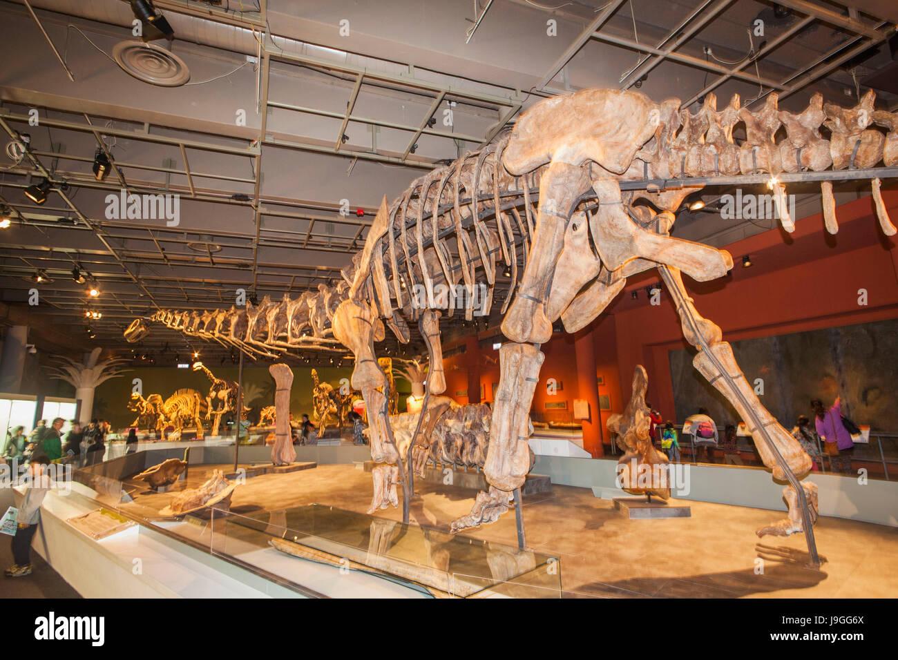 Dinosaur Bone Stock Photos Images Page 3 Alamy Titan Joger China Skelton Of Daxiatitan Binglingi Image