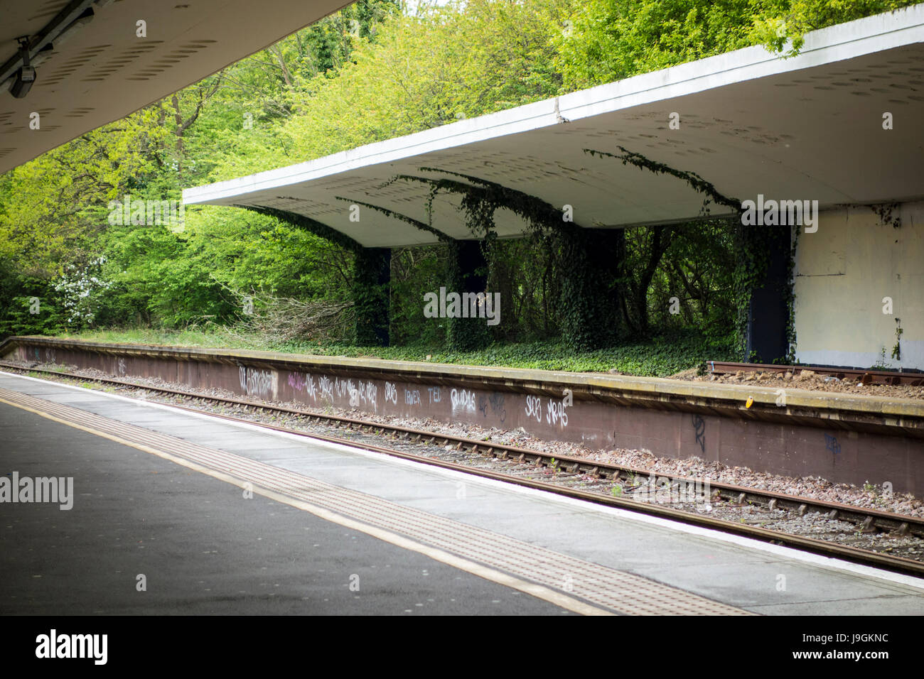 Disused station platform, Chessington South train station, would have been for through trains from Leatherhead but - Stock Image