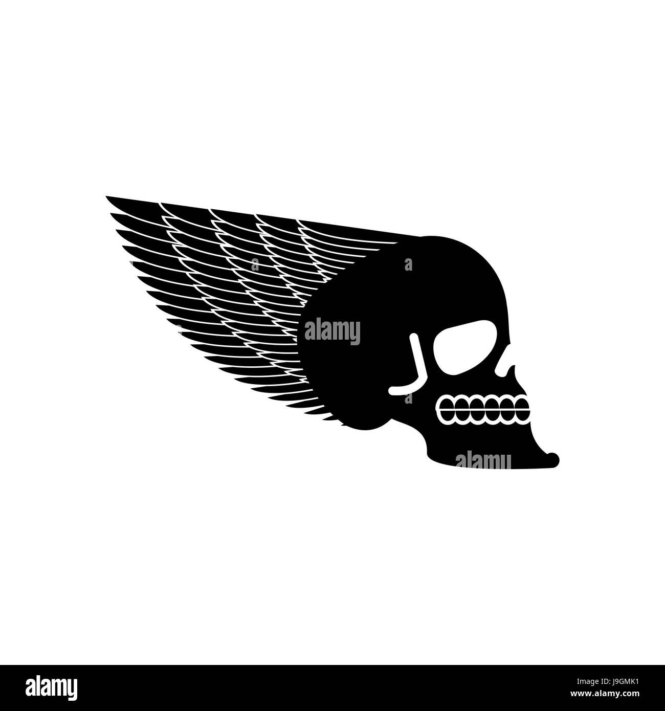 Skull With Wings Emblem Head Of Skeleton And Wing Stock Vector Art