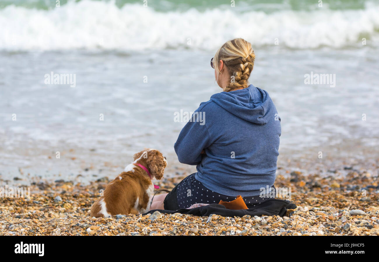 Young woman sitting with a dog on a beach. - Stock Image