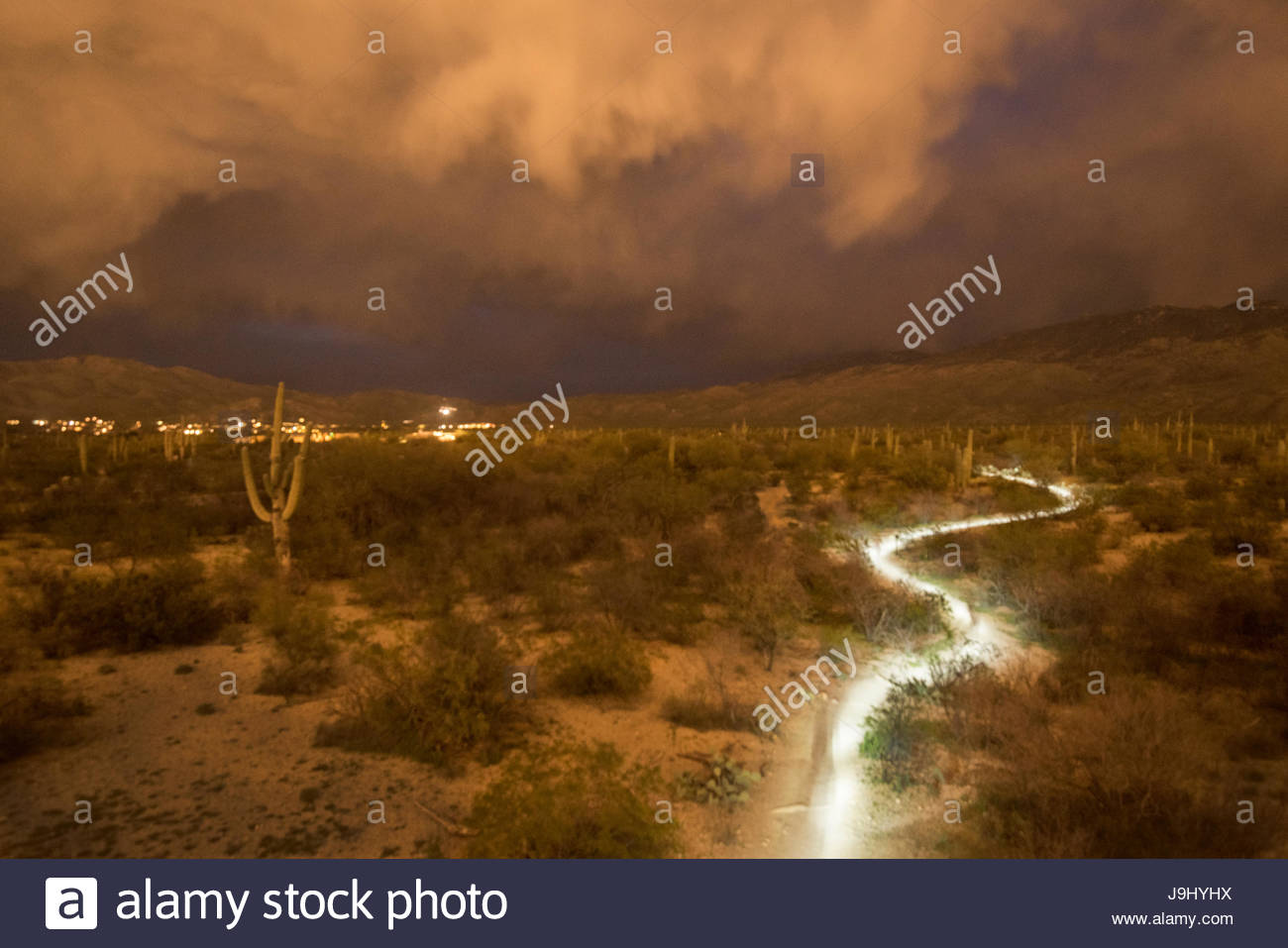 The headlamp of a hiker on a trail in Saguaro National Park during approaching storm clouds lit up by Tucson lights. - Stock Image