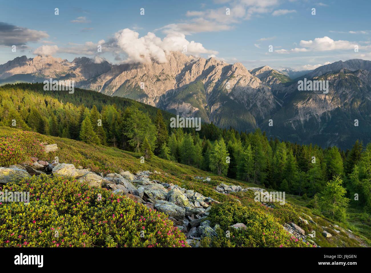 View of the Hochstein to the Lienzer Dolomiten, Osttirol, Tyrol, Austria Stock Photo