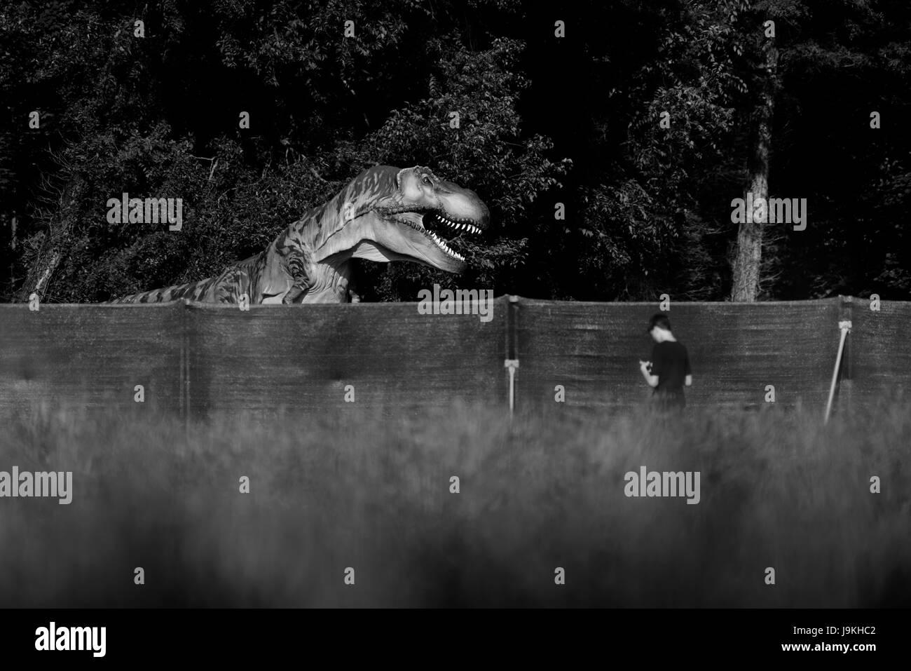 Dinosaur park - Stock Image