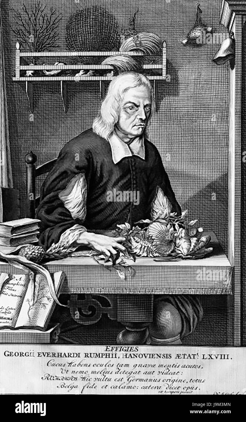 GEORG RUMPHIUS (1627-1702) German botanist in an engraving by his son Paul about 1695 - Stock Image