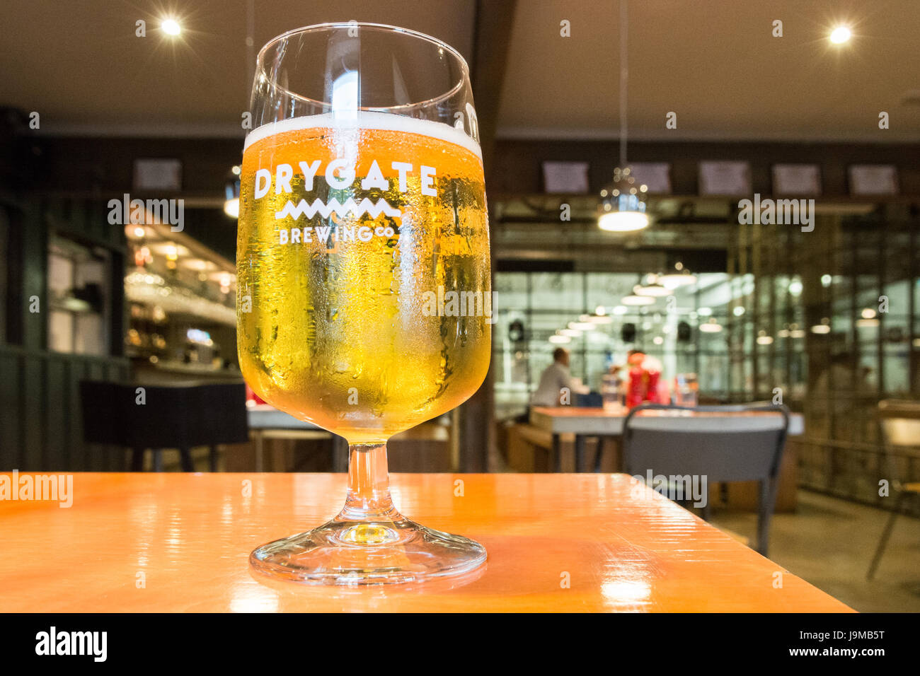 Drygate brewery - glass of Pilsner at the Brewery Tap and Restaurant, Glasgow, Scotland, UK - Stock Image