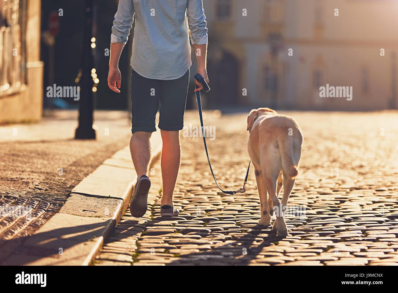 Morning in the city. Young man walking with his dog on the old street at golden sunrise. Prague, Czech Republic - Stock Image