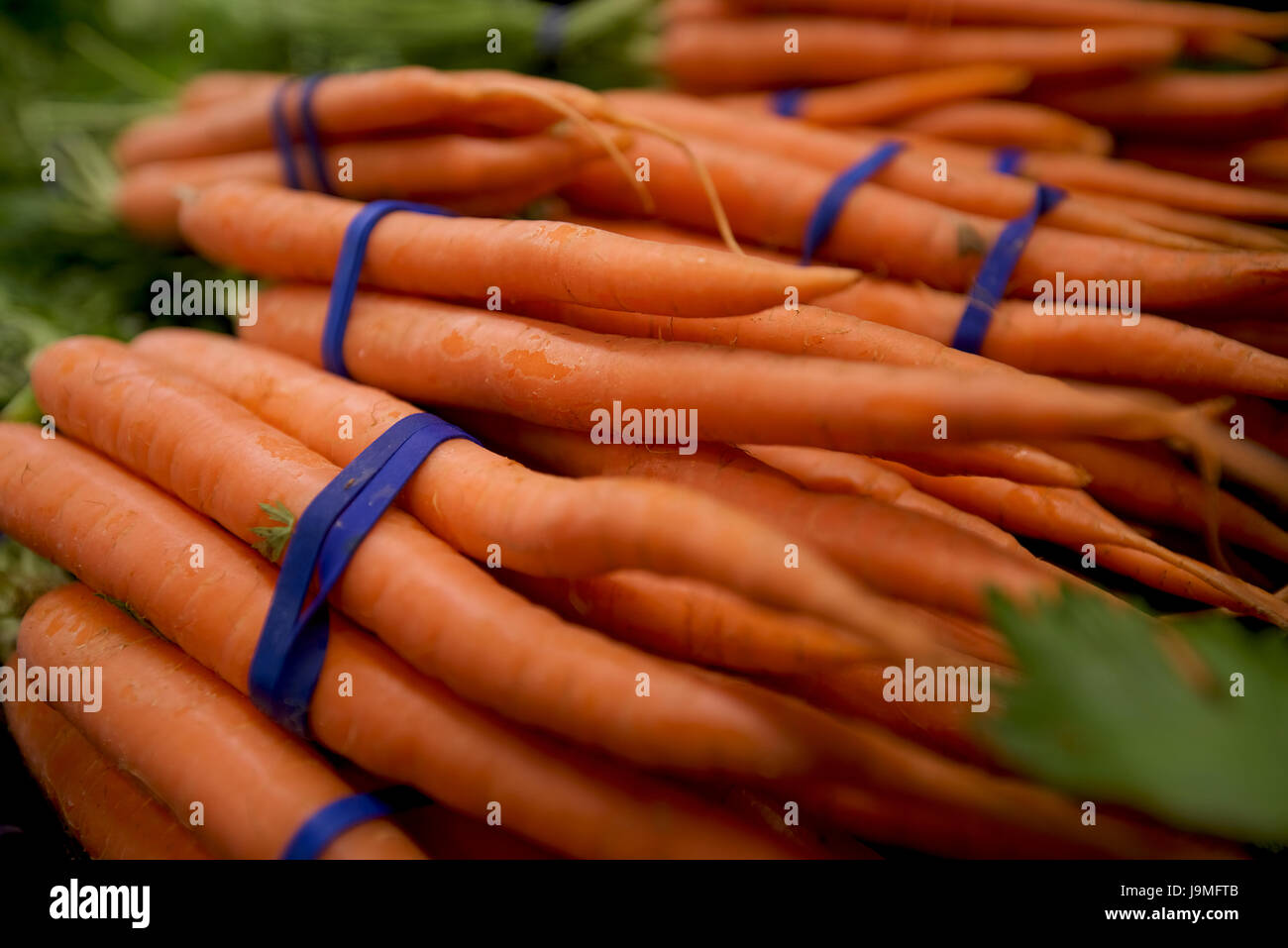 Bundles of carrots for sale in a vegetable market. Stock Photo