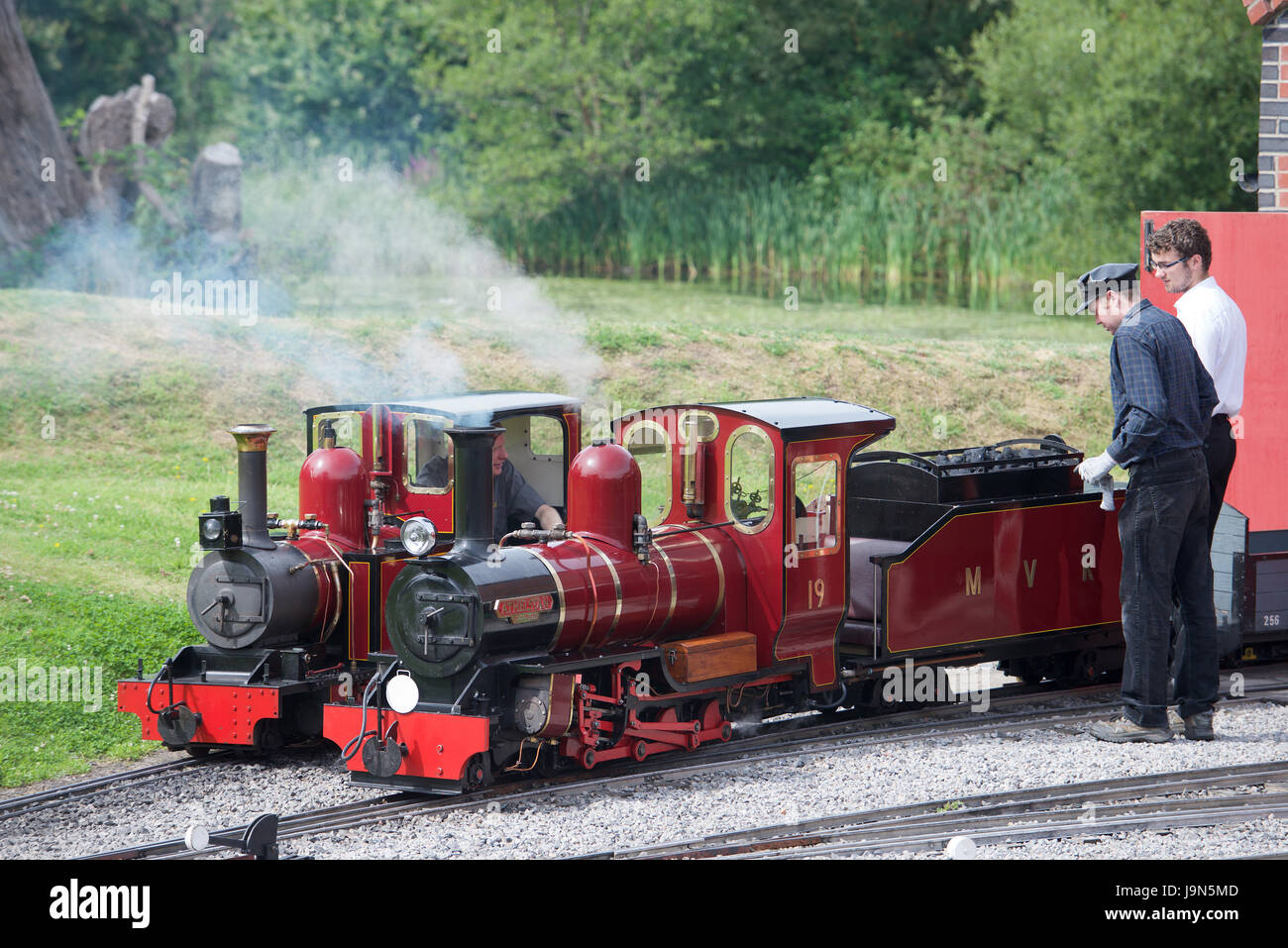 Narrow gauge steam locomotive Stock Photo: 143680333 - Alamy