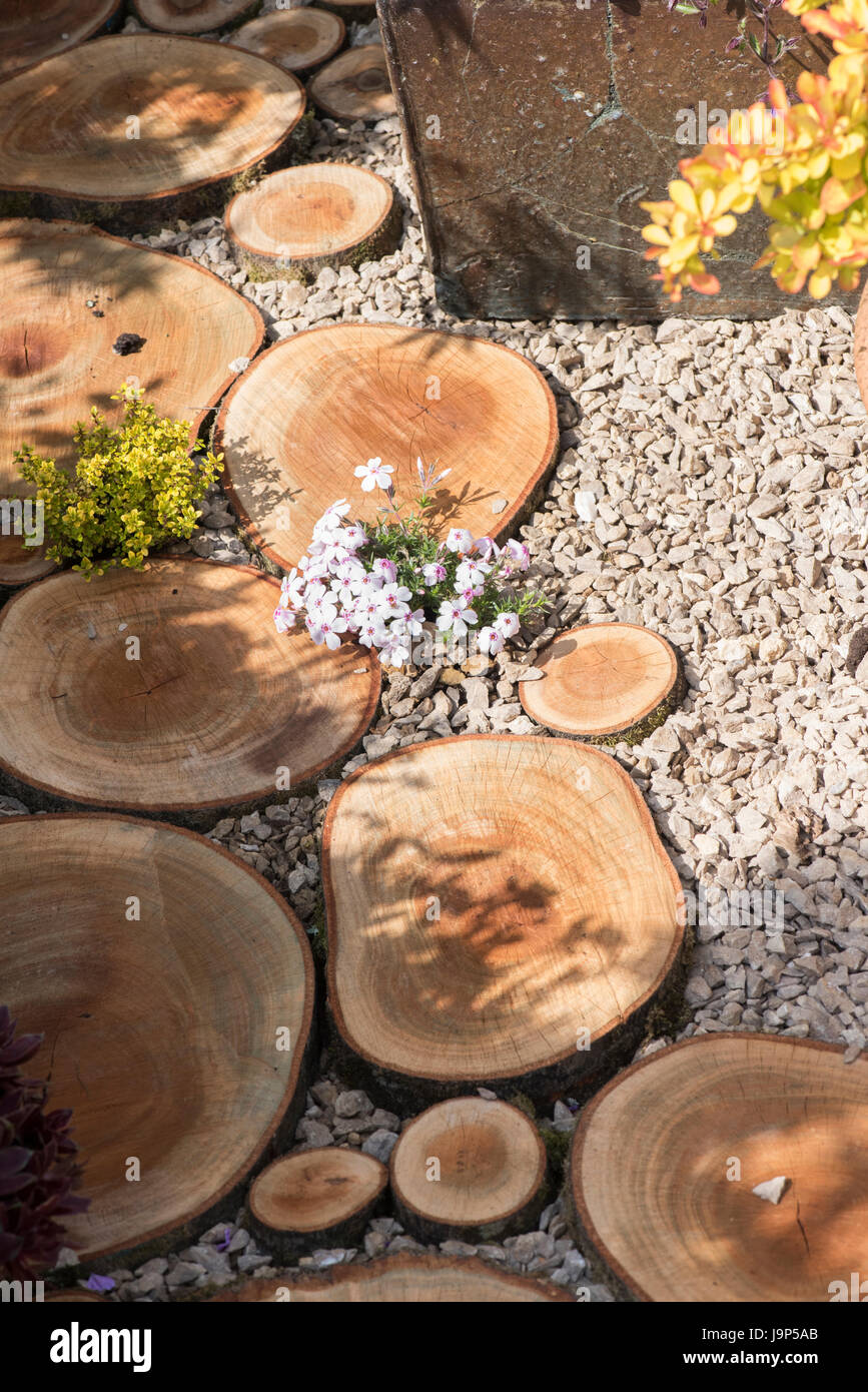 Cut logs used as stepping stones in a flower show garden uk stock cut logs used as stepping stones in a flower show garden uk workwithnaturefo