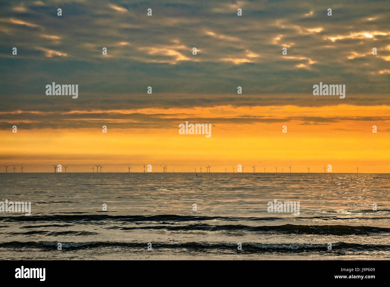sunset at North Sea coast in the Netherlands - Stock Image