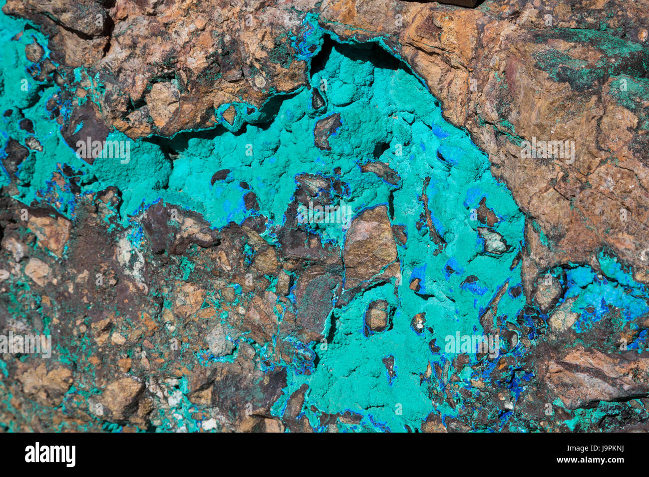 Oracle, Arizona - A rock displaying malachite (green) and azurite (blue) minerals on display outside Biosphere 2. - Stock Image