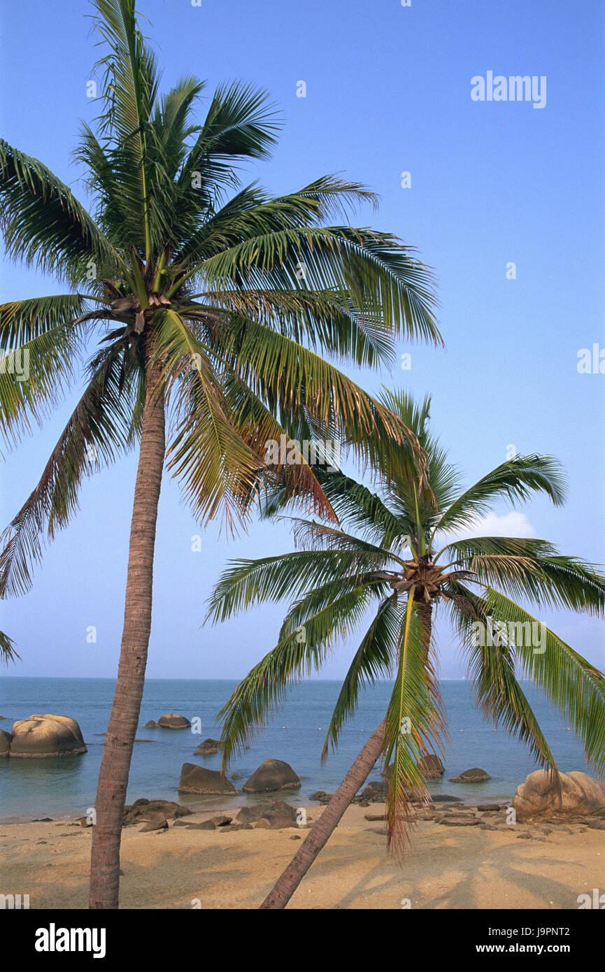 China,Hainan Iceland,Sanya,sandy beach,rock,palms,Asia,Eastern Asia,destination,beach,vacation,tourism,beach vacation,sea,water,dream - Stock Image