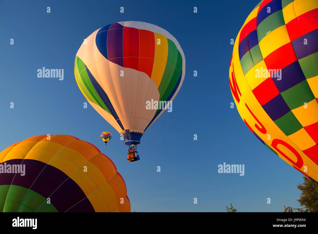 Hot air balloon, Northwest Art and Air Festival, Timber Linn Park, Albany, Oregon - Stock Image