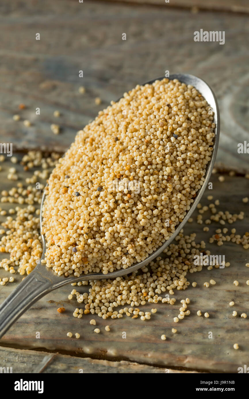 Raw Organic White Poppy Seeds in a Bowl - Stock Image