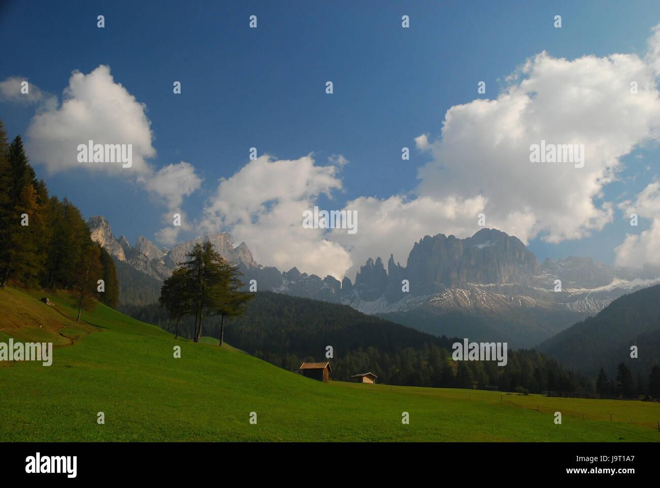 Italy,South Tirol,Tierser valley,St. Zyprian,the Dolomites,mountain pasture,rose garden,Vajolettürme,pert electrolytic - Stock Image