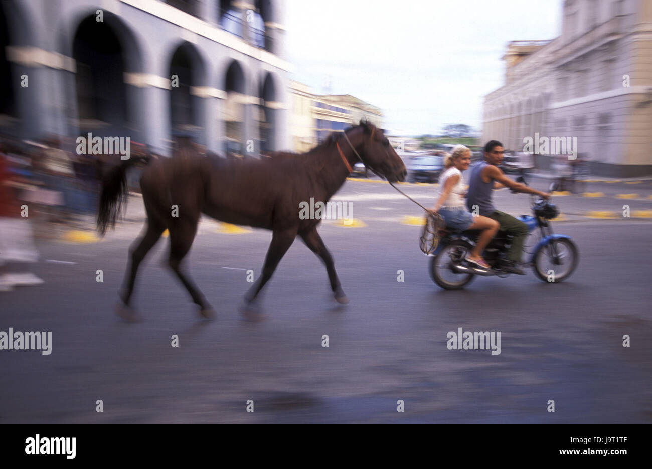 Cuba,Matanzas,plaza de la Vigia,couple,motorbike,cord,horse,lead along,no model release,Central America,street,moped Stock Photo
