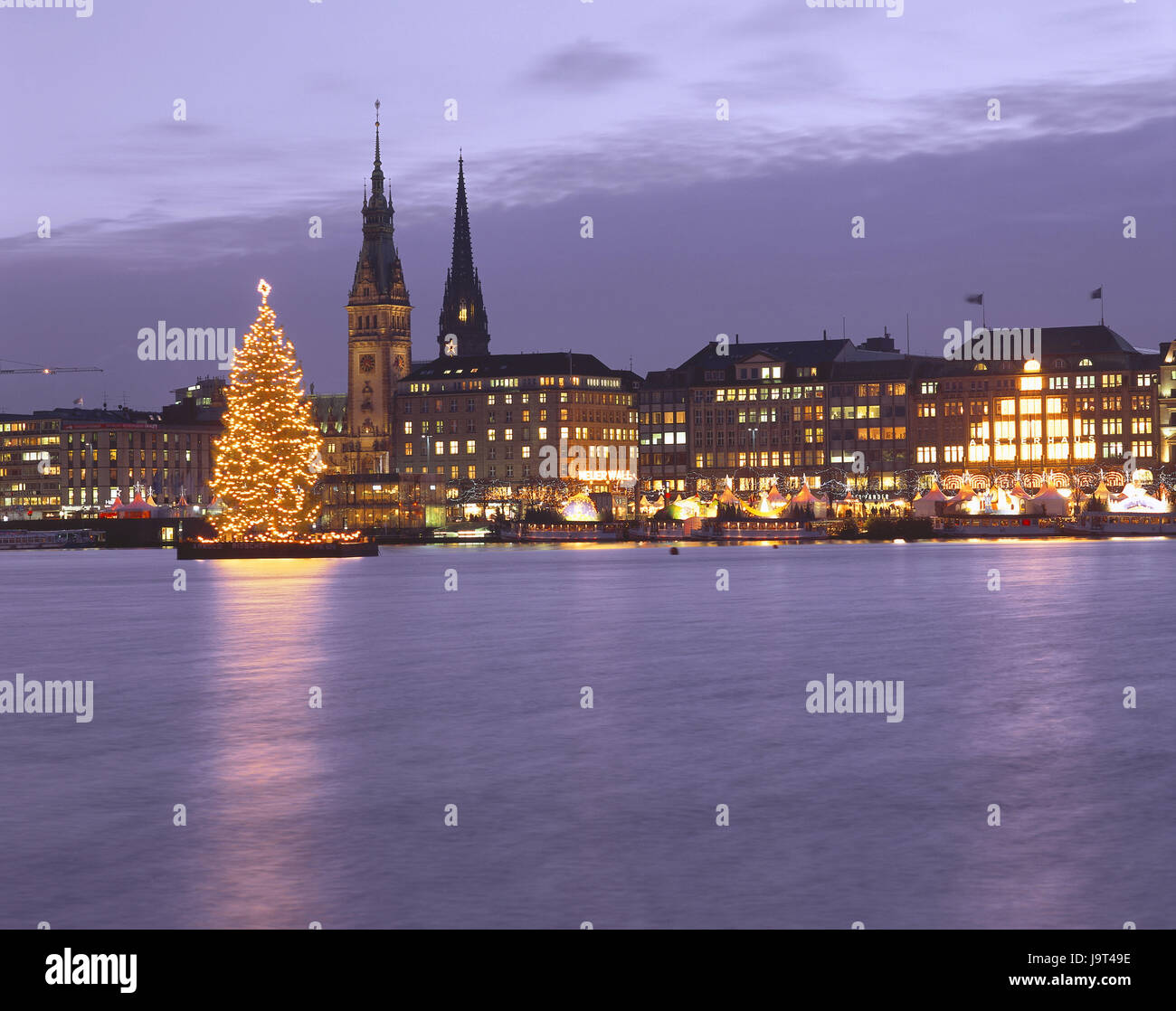 Christmas Tree Not Taking Water.Tree Not Stock Photos Tree Not Stock Images Alamy