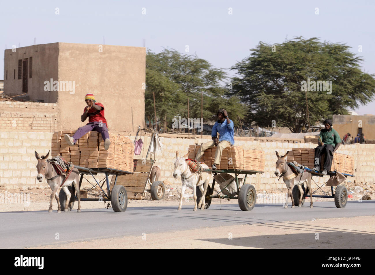 Mauritania,Nouakchott,men,donkey carts,costs transport,no model release,Africa,West Africa,town,capital,economy,building,houses,architecture,person,locals,turban,transport,carts,donkeys,animals,benefit - Stock Image