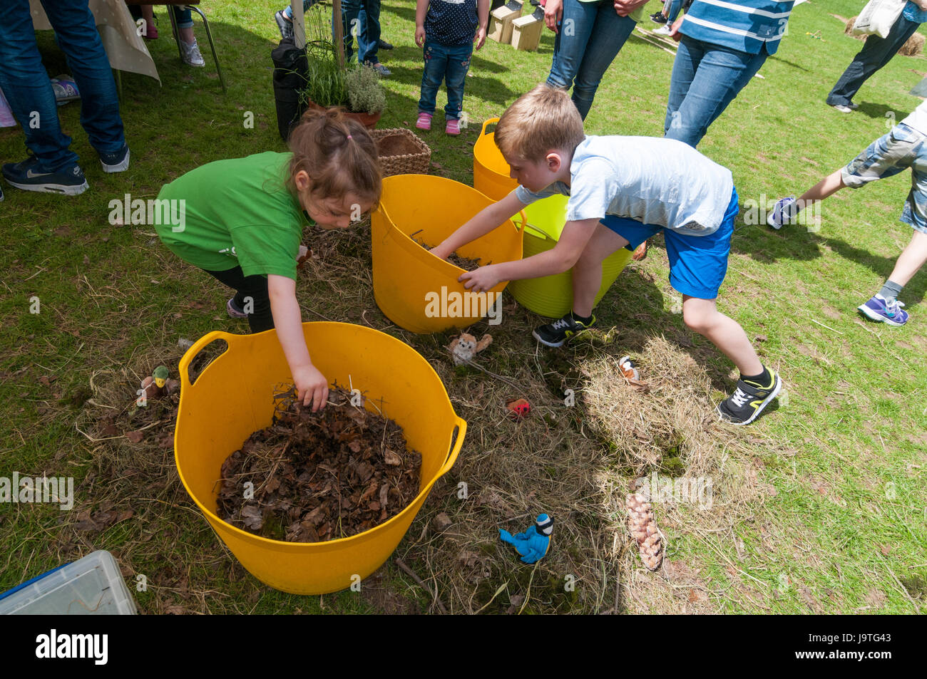 Oxford, Oxfordshire, UK. 3rd Jun 2017, Families enjoy the Oxford Festival of Nature at the Natural History Museum. - Stock Image