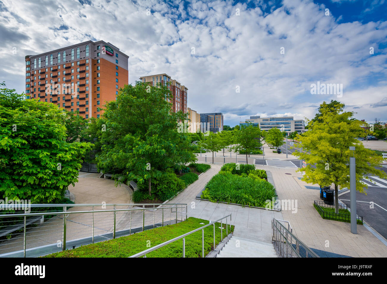 Gardens and trees at Canal Park in the Navy Yard neighborhood of Washington, DC. Stock Photo