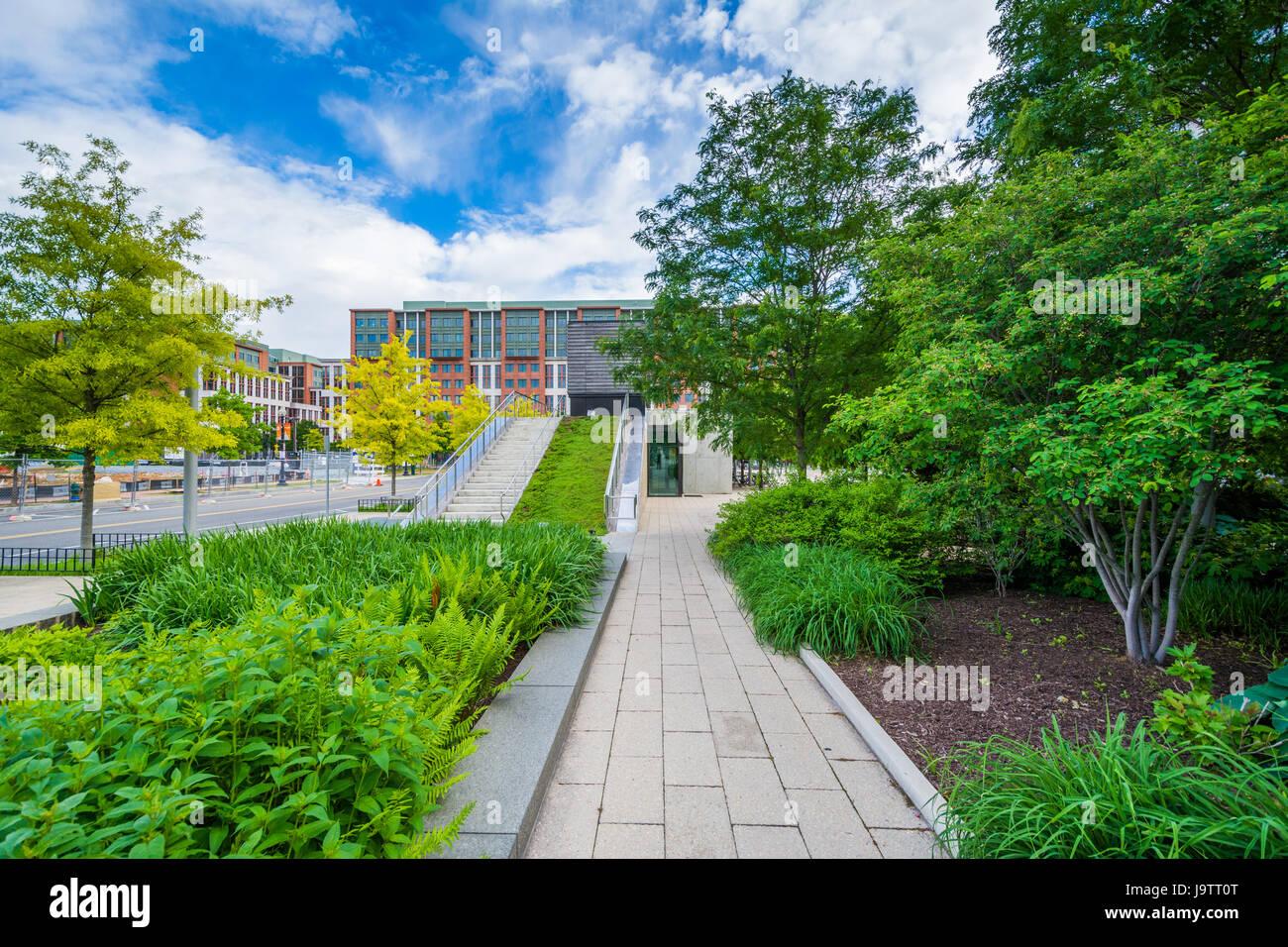 Gardens at Canal Park in the Navy Yard neighborhood of Washington, DC. Stock Photo