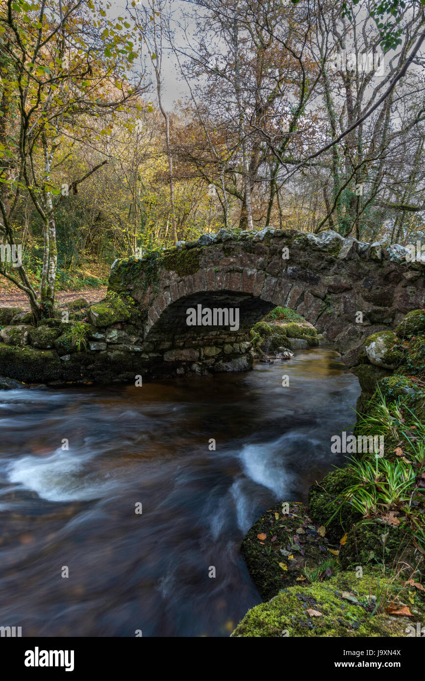 Hisley packhorse bridge over the River Bovey nr Lustleigh on Dartmoor. - Stock Image