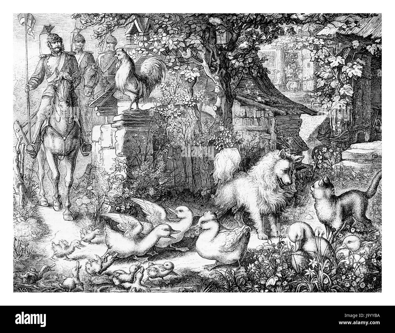 Soldiers are coming, creating havoc among the animals in the farmyard, engraving from XIX century - Stock Image