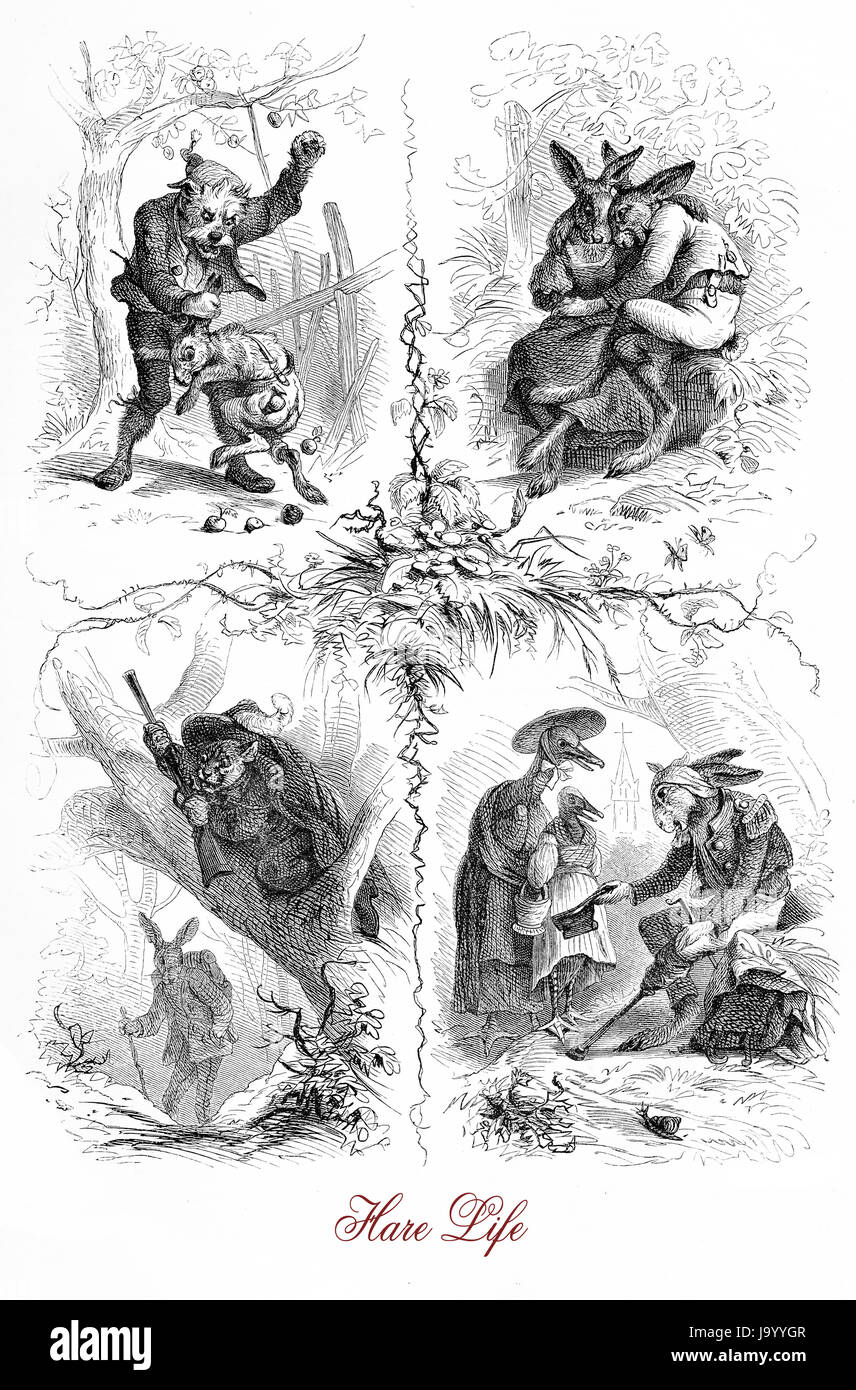 Hare life, caricatures and vignettes in form of faity tale, XIX century - Stock Image