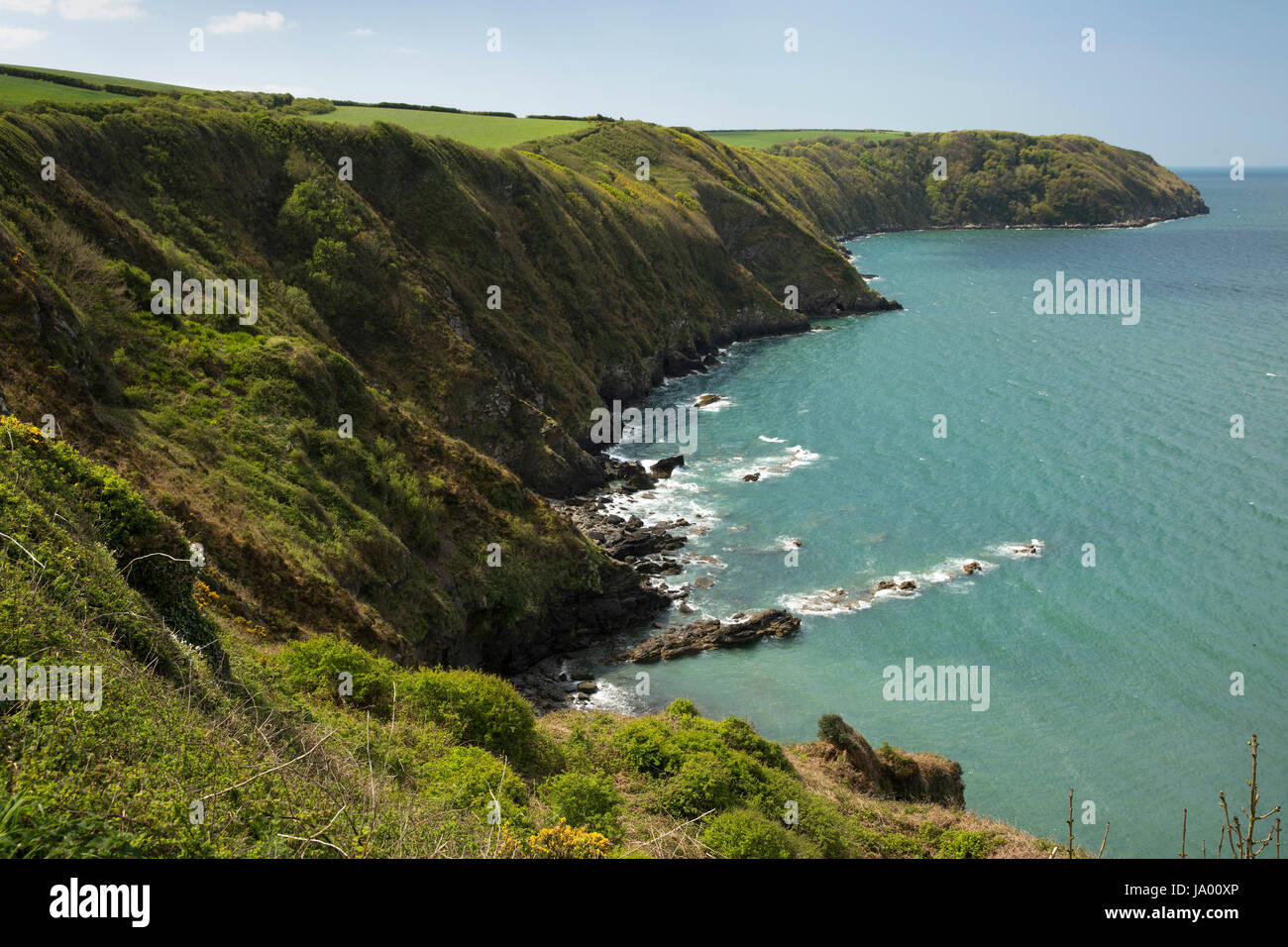UK, Wales, Pembrokeshire, Little Haven, Borough Head above Goultrop rocks - Stock Image