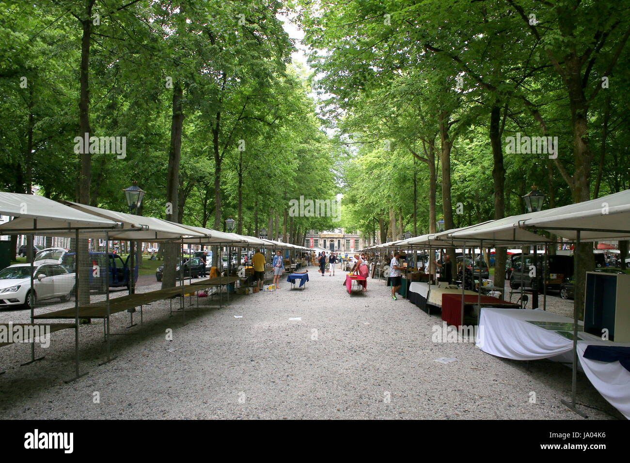 Sunday Antique and Book Market Lange Voorhout boulevard, central Den Haag (The Hague), Netherlands - Stock Image