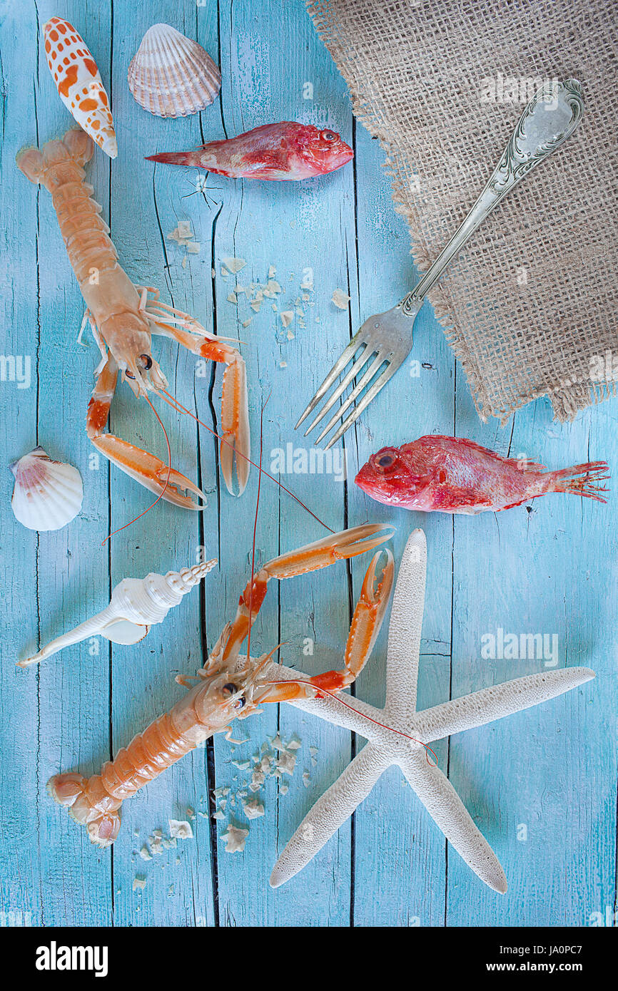 Concept of sea on the table: raw lobsters, scorpionfish and seashells on blue wooden background. - Stock Image