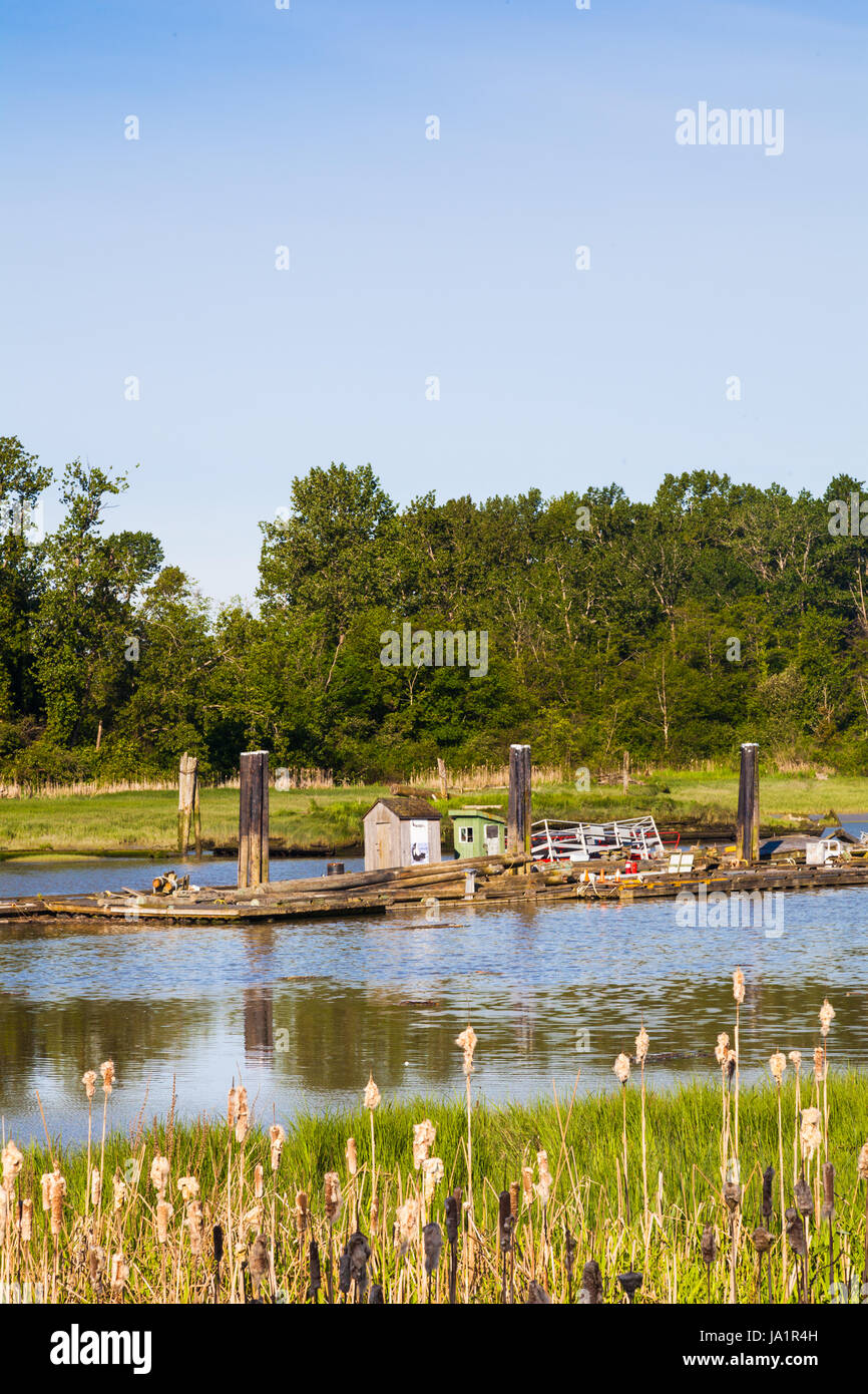 Floating pontoon with stored junk in a tidal inlet - Stock Image