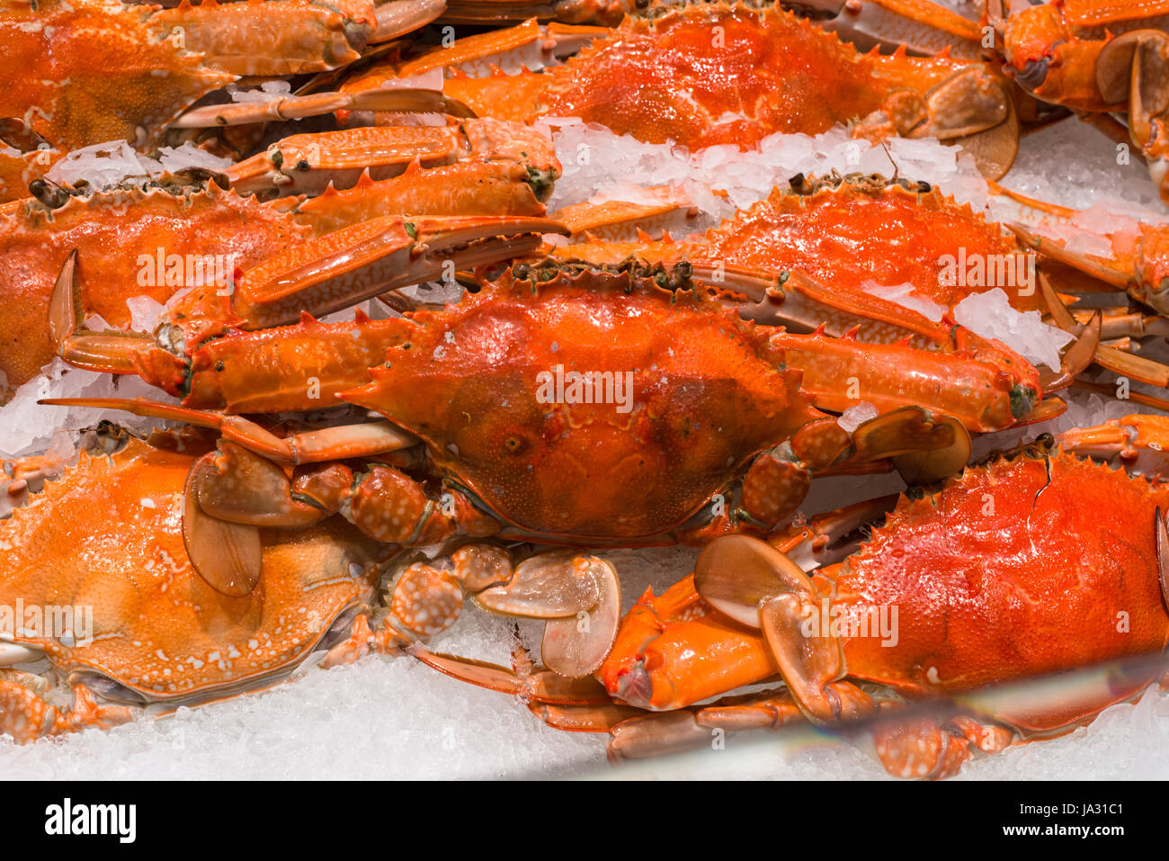 Cooked Blue Swimmer Crabs on sale at Sydney fish market, New South Wales, Australia - Stock Image