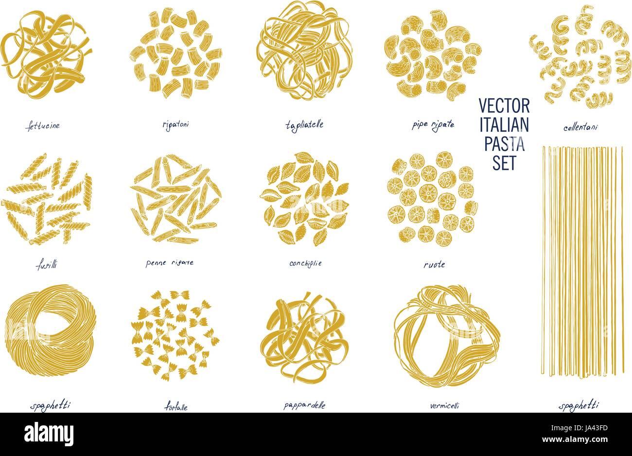 Big set of Italian pasta. Fettucine, conchiglie, fusilli, cellentani, vermicelli, tagliatelle pipe rigate ruote Stock Vector