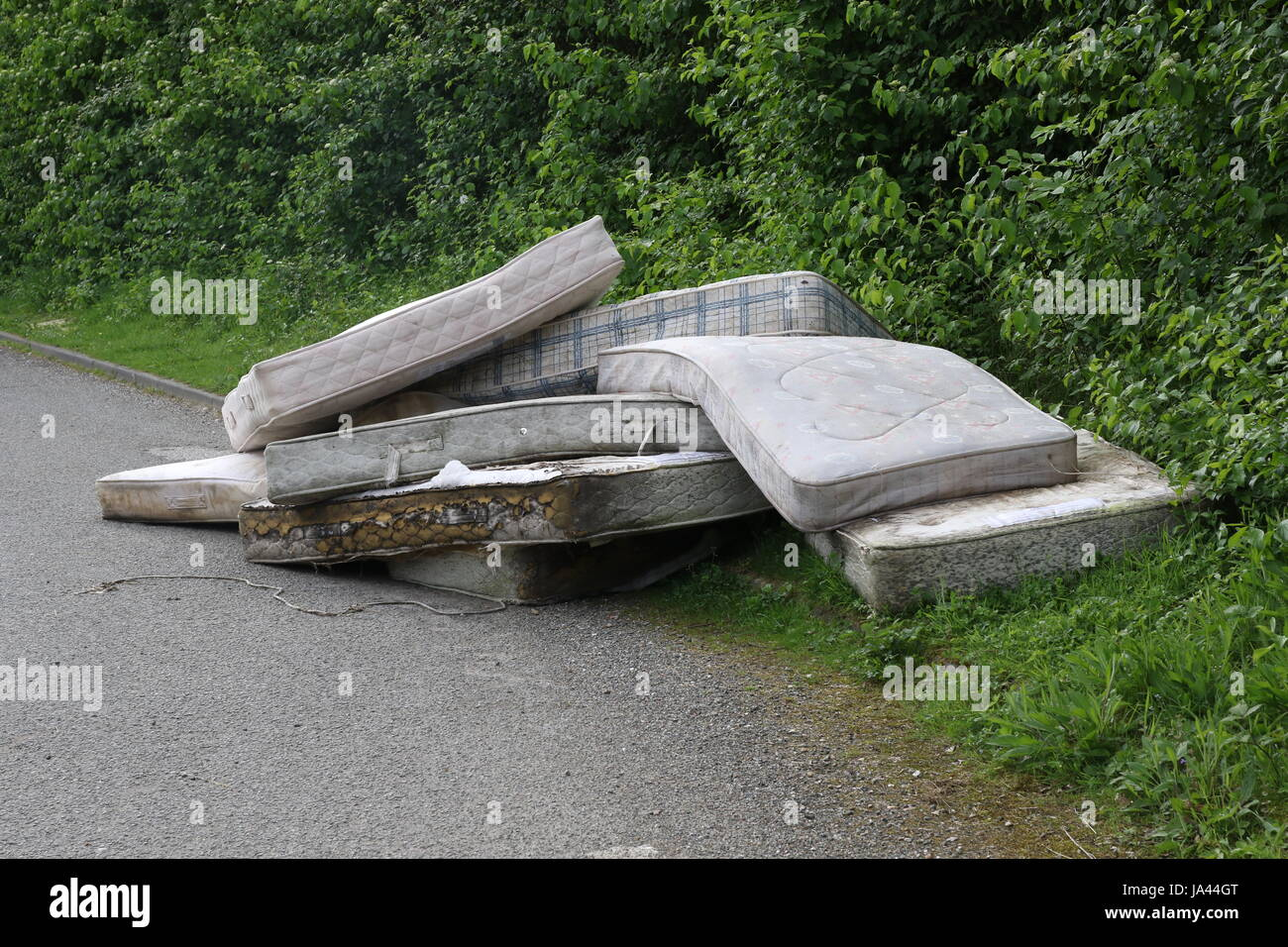 A load of mattresses dumped by the side of a country road in Sussex - Stock Image