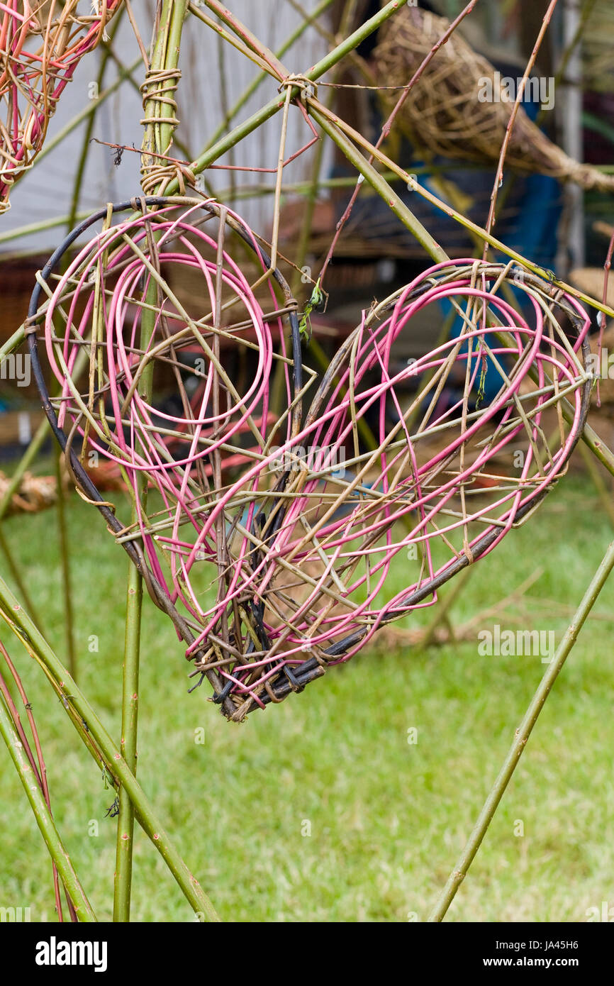 coloured willow hearts - Stock Image