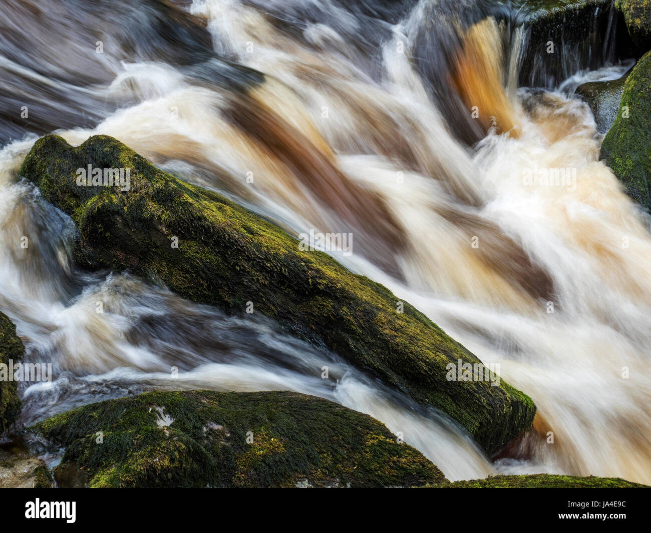 Bolton Abbey North Yorkshire England - Stock Image