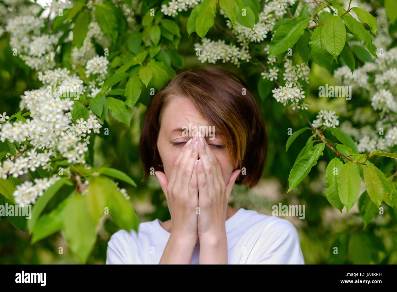 A beautiful girl stands by the blossoming bird cherry and sneezes. She suffers from an allergy to flowering in the - Stock Image