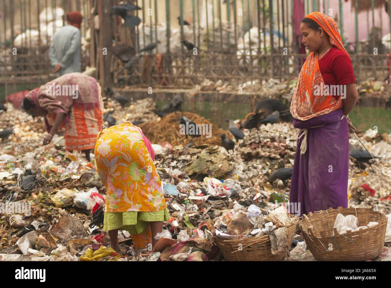 Indian women in brightly coloured clothing sorting through piles of rubbish in Calcutta, West Bengal, India. - Stock Image
