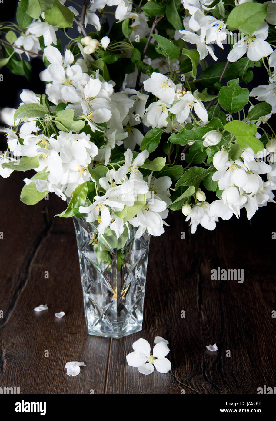 A Bouquet Of Jasmine Flowers On A Rustic Table Rustic Style Stock