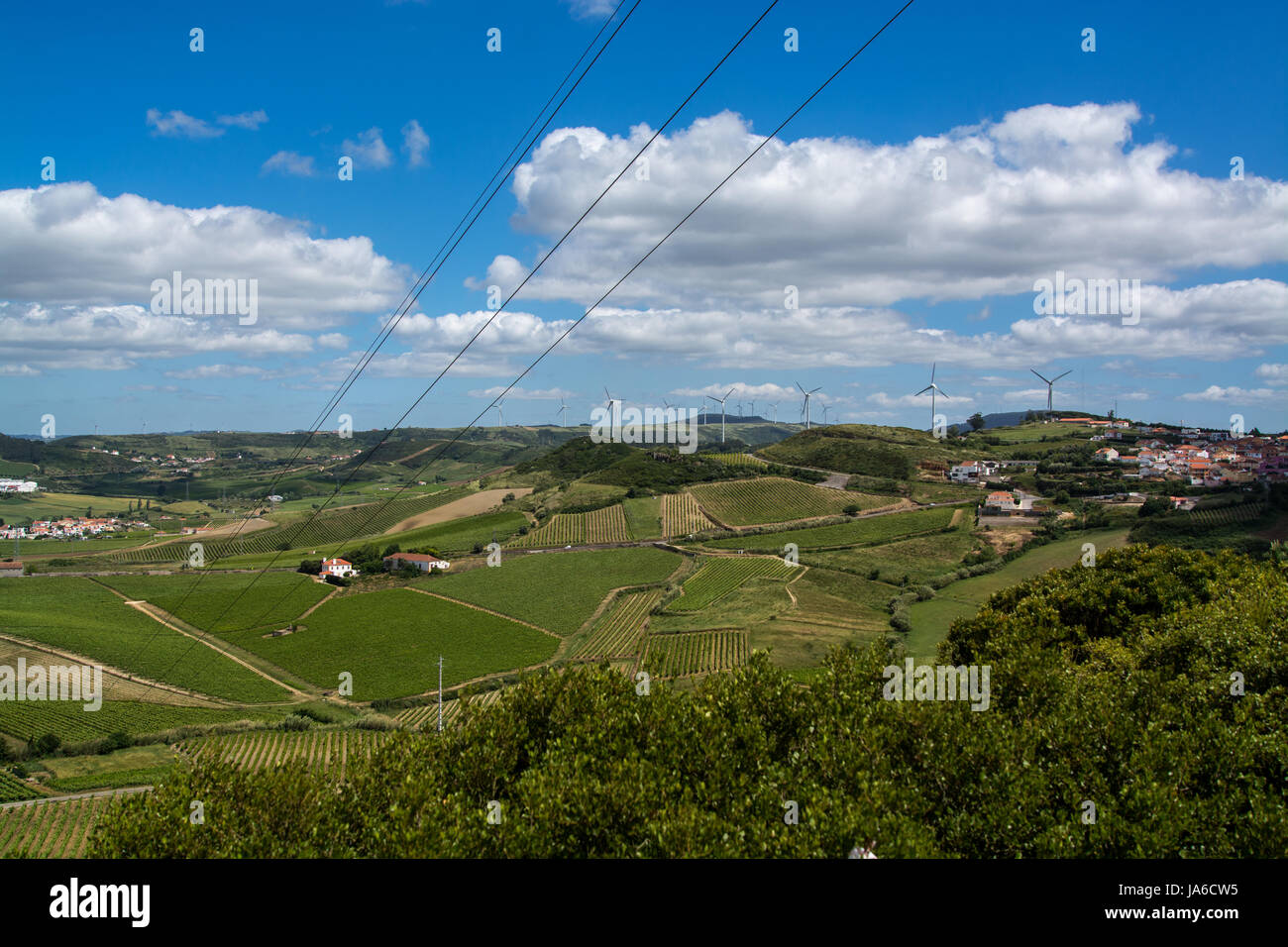 Torres Vedras Portugal. 18 May 2017.View of the agriculture fields inTorres Vedras.Torres Vedras, Portugal. photography - Stock Image