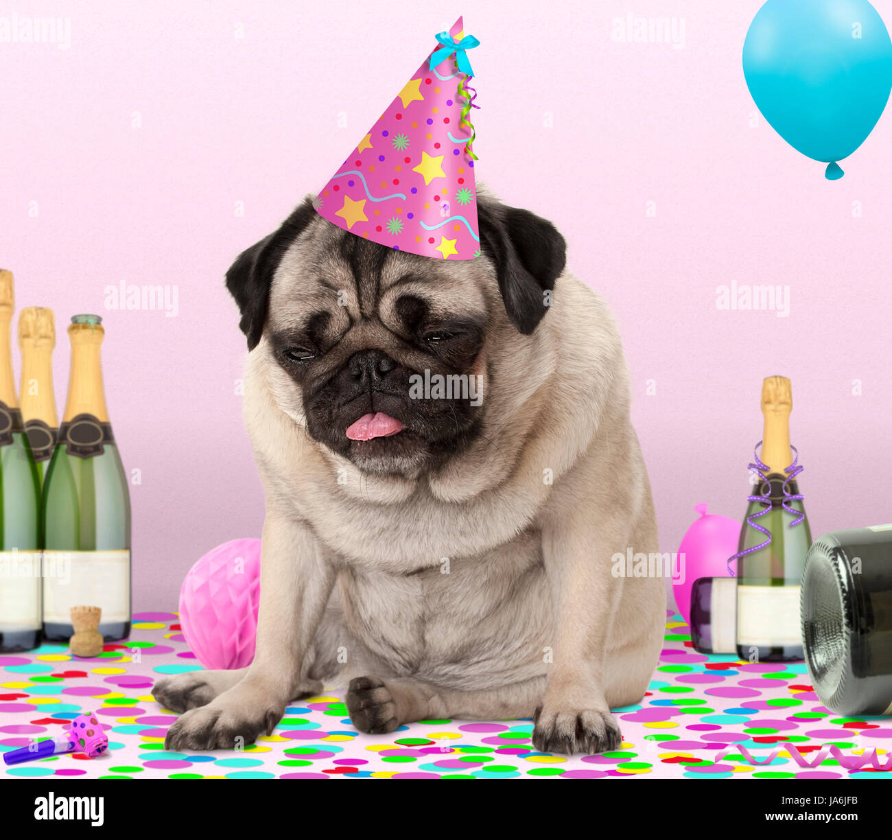 cute pug puppy dog wearing party hat, lying down on confetti, drunk on champagne with hangover, on pink background Stock Photo