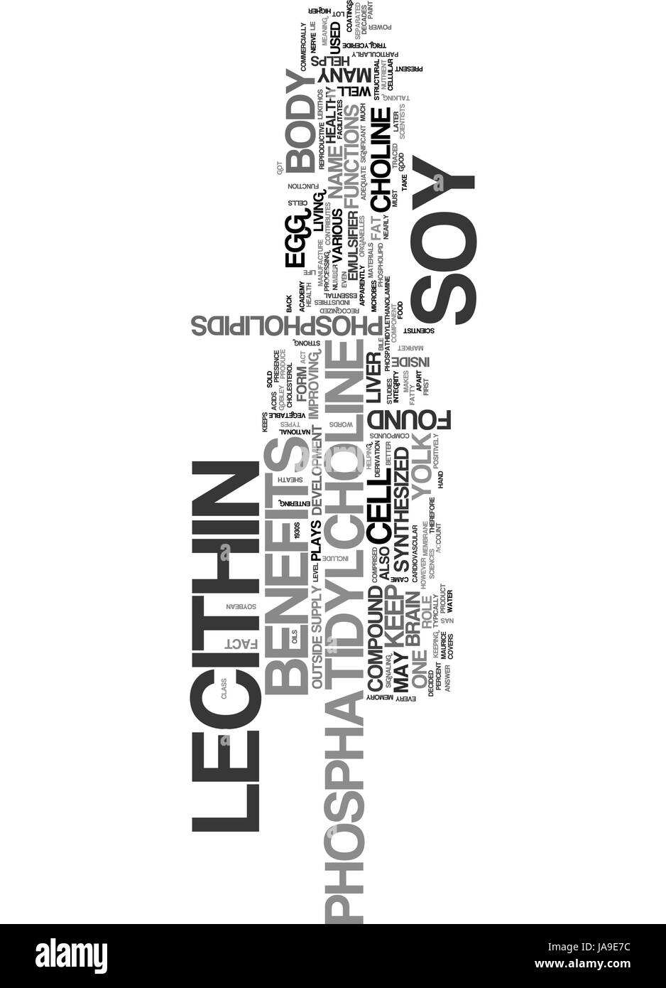 BENEFITS OF SOY LECITHIN TEXT WORD CLOUD CONCEPT - Stock Vector