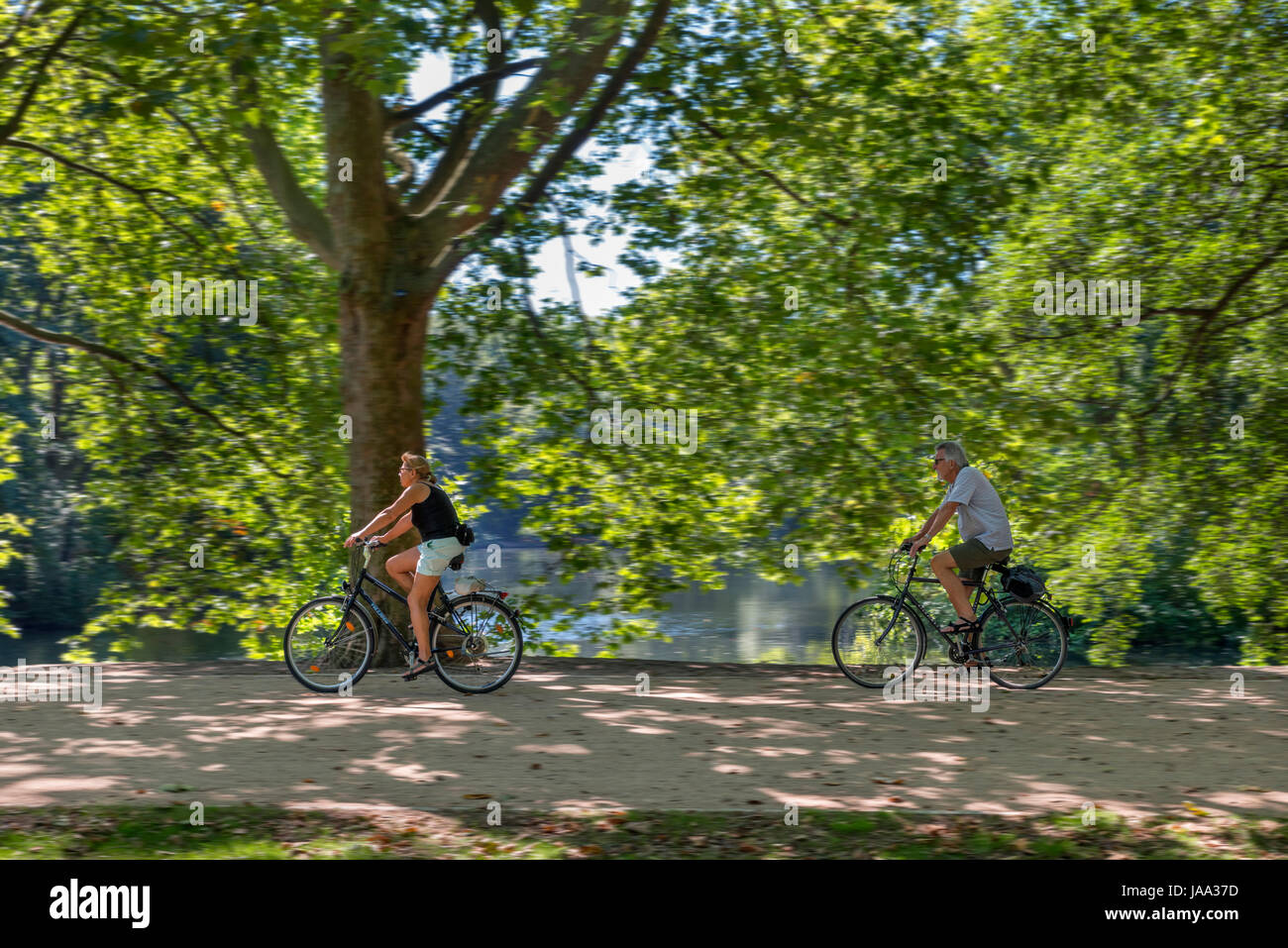 Cyclists on a path near the Neuer See,Tiergarten, Berlin, Germany Stock Photo