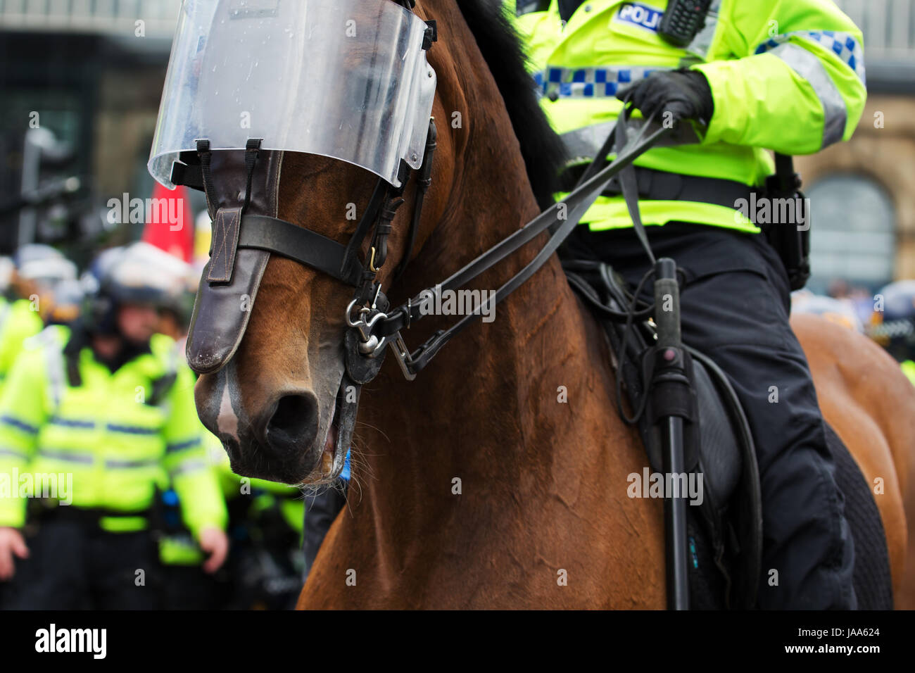Mounted Police Horses In Riot Gear High Resolution Stock Photography And Images Alamy