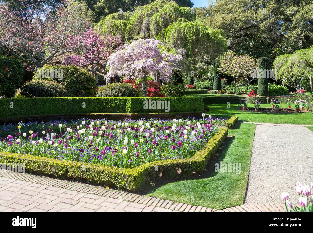 this image was taken at a formal garden near san francisco stock