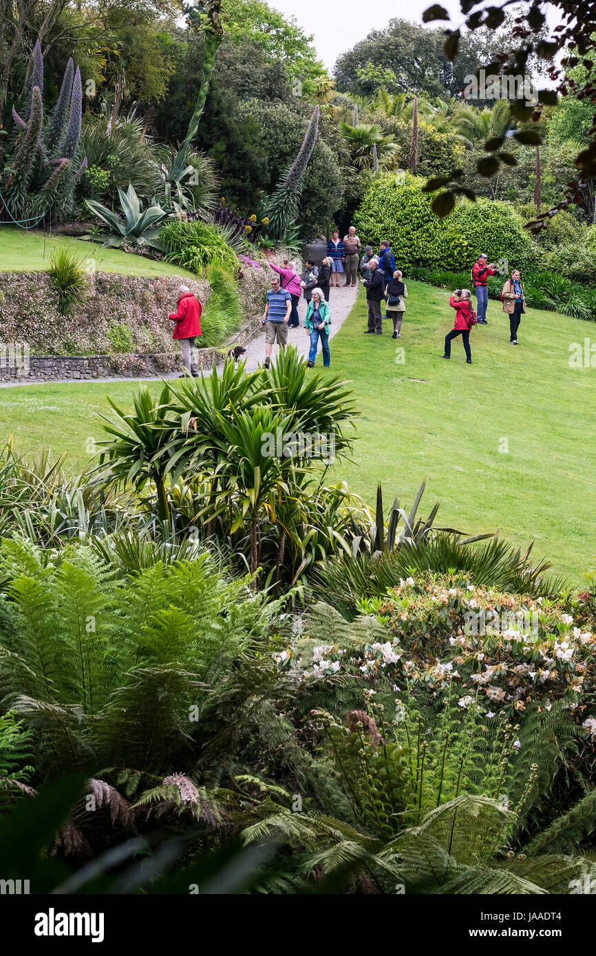 Tourists visiting the sub-tropical Trebah Garden in Cornwall. - Stock Image