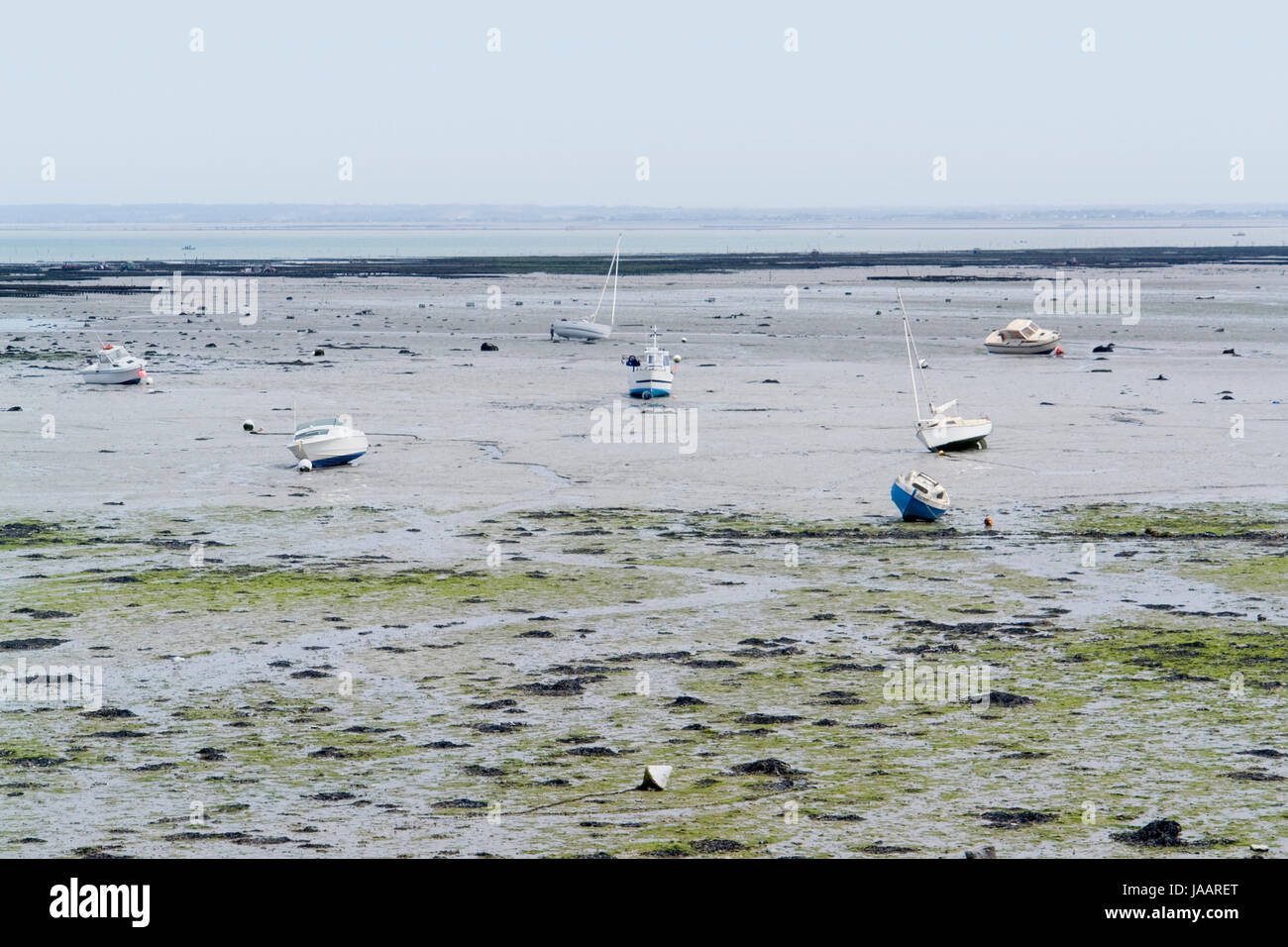 coastal scenery at ebb tide around a town in Brittany named Cancale Stock Photo