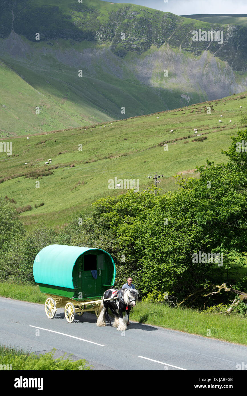Gypsy travellers with horse drawn caravan on the A683 near Cautley, Cumbria, UK. - Stock Image
